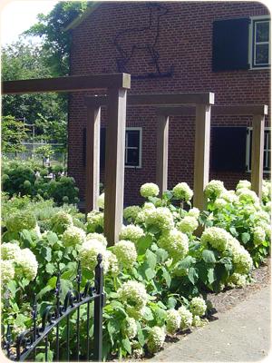 Huub Wieggers Tuinen